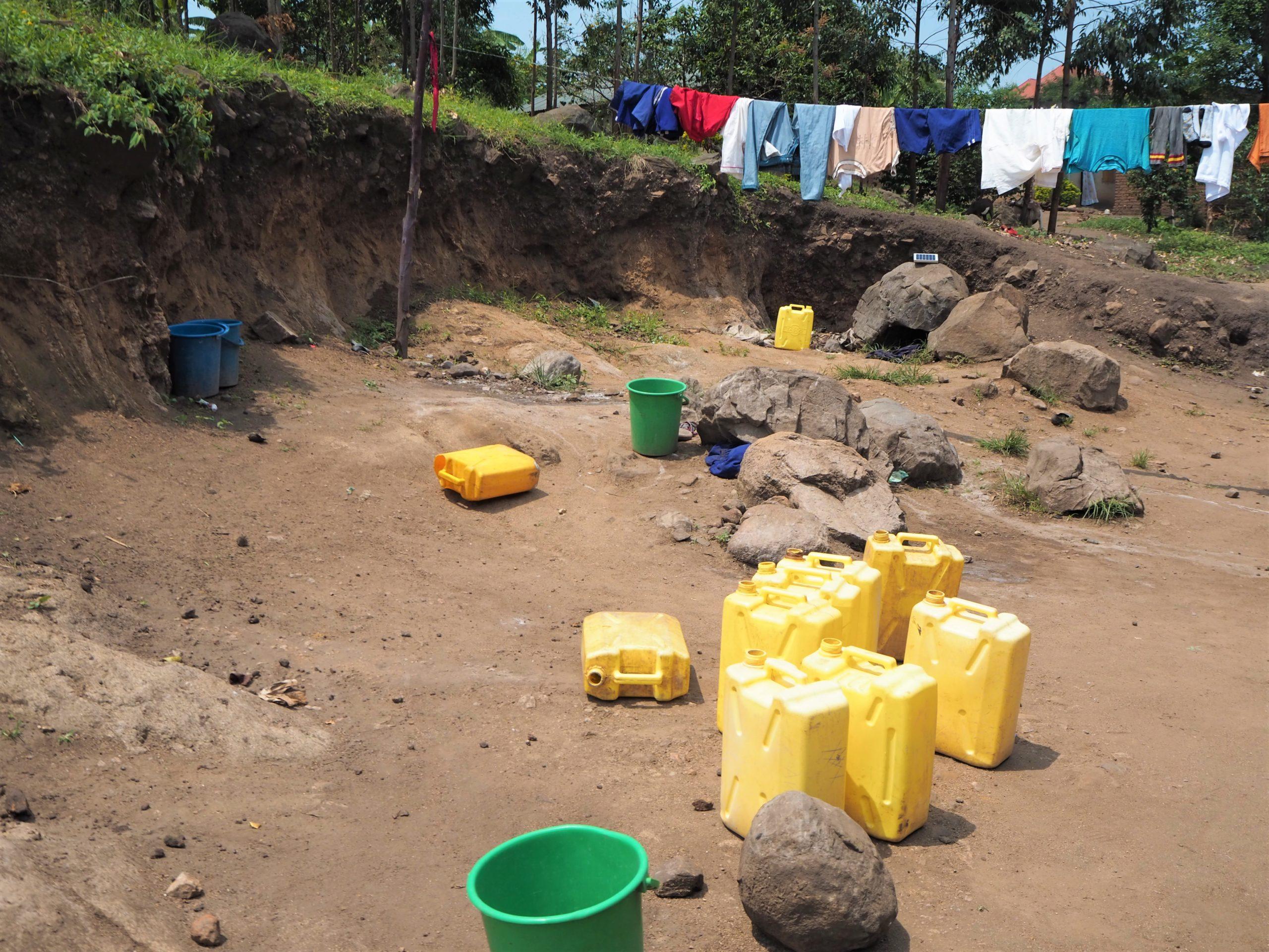 Challenge déforestation ouganda